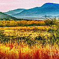 Bob Johnston - Sunrise in Verde Valley...