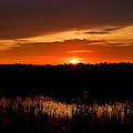 Kathy Baccari - Sunset From The...