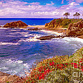 Bob and Nadine Johnston - Sunset Laguna Beach...