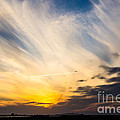 Debra Martz - Sunset Over The JFK...