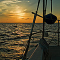 Judy  Johnson - Sunset Sail