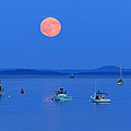 Barbara West - Super Moon Belfast...
