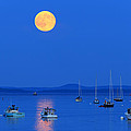 Barbara West - Super Moon Over Belfast...