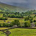Trevor Kersley - Swaledale