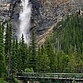 Lisa  Phillips - Takakkaw Falls