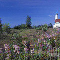 Daniel Dempster - Tawas Point Light -...