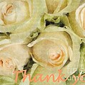 Barbie Corbett-Newmin - Thank you roses