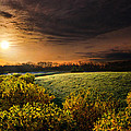 Phil Koch - That