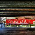 Joann Vitali - The Barking Crab - Boston