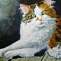 Gerald Bienvenu - The CALICO