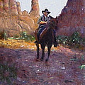David Zimmerman - The Cochise Stronghold