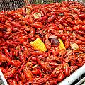Michael Hoard - The Crawfish Boil In New...
