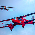 Chris Lord - The de Havilland DH90...