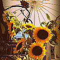 Photographic Art and Design by Dora Sofia Caputo - Sunflowers At The...