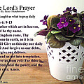 Bible Verse Pictures - The Lords Prayer