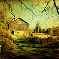 Trina  Ansel - The Old Barn with Texture