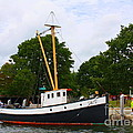 Dora Sofia Caputo - The Old Tugboat at Mystic