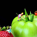 Paul Ge - The planting tomato and...