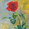 Victoria Kharchenko - The rose at an autumn...