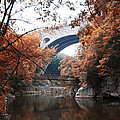 Bill Cannon - The Wissahickon Creek...