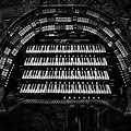 Jack Zulli - Theater Organ