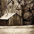 Christine Harrison - This Old Barn