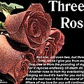 Rusty  Gouveia - Three Roses