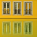 David Letts - Three Windows Reflecting...