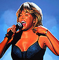 Paul  Meijering - Tina Turner Queen of Rock