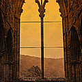 Liz  Alderdice - Tintern Abbey