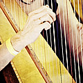 Mike Martin - To Play the Harp