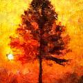 Amy Cicconi - Tree at Sunrise
