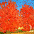 Luther  Fine Art - Tree - Autumn Wonder -...