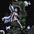 Todd and candice Dailey - Tree Fairy 2