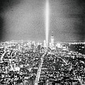 Vivienne Gucwa - Tribute in Light - New...