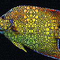 Sharon Cummings - Tropical Fish 12 -...