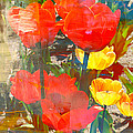 Carol Groenen - Tulip Abstracts
