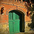 John Malone - Tuscany Door with Horse...
