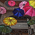 Joan  Minchak - Umbrella Fun