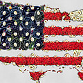 Eti Reid - USA flag map fruits and...