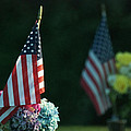 Thomas Woolworth - USA Grave Flag