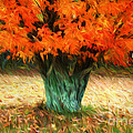 Darren Fisher - Van Gogh Autumn