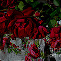 Luv Photography - Red Velvet Roses