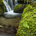 Andy Gimino - Vermont Spring Waterfall...