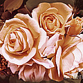 Jennie Marie Schell - Victorian Ladies Rose...