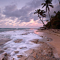 Patrick Downey - Vieques Sunrise