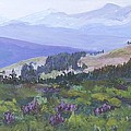 Joan Willoughby - View from Shrine Pass