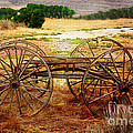 Janice Rae Pariza - Wagon Wheels From The...
