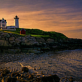 Joan Carroll - Warm Nubble Dawn