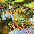 Dominique Amendola - water lilies in...